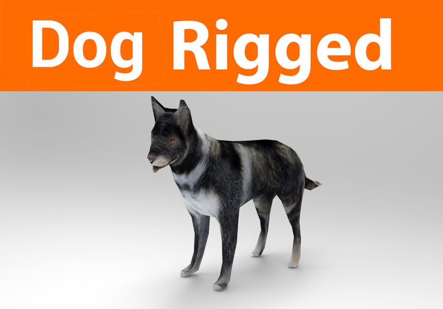 dog rigged royalty-free 3d model - Preview no. 1