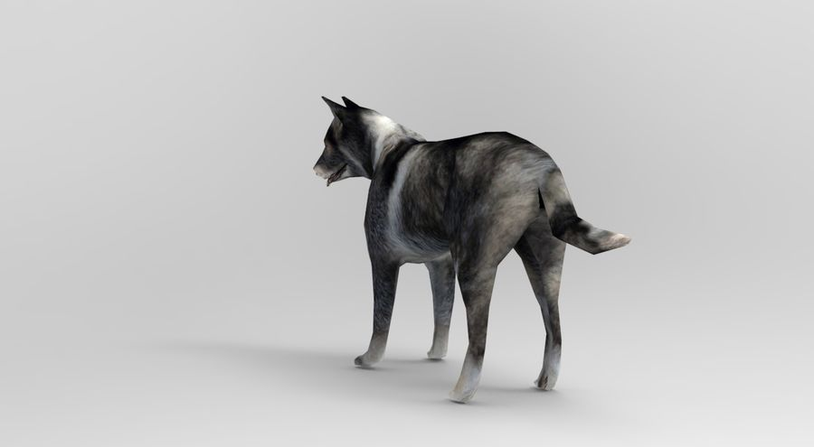 dog rigged royalty-free 3d model - Preview no. 3
