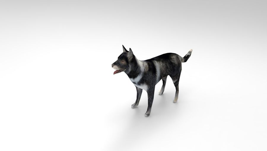 dog rigged royalty-free 3d model - Preview no. 18