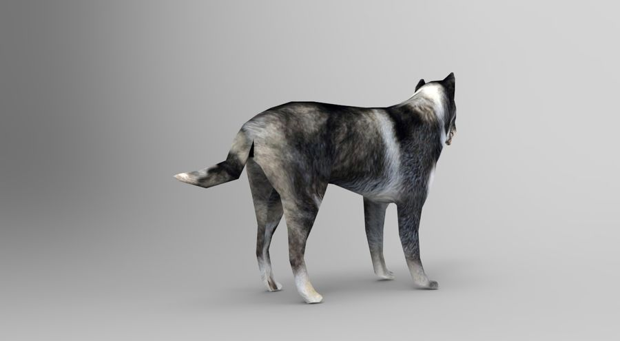 dog rigged royalty-free 3d model - Preview no. 5