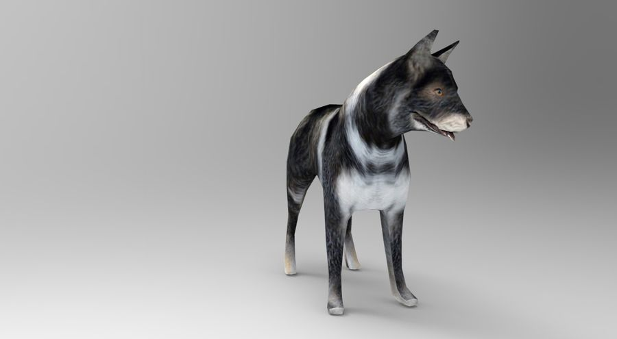 dog rigged royalty-free 3d model - Preview no. 7