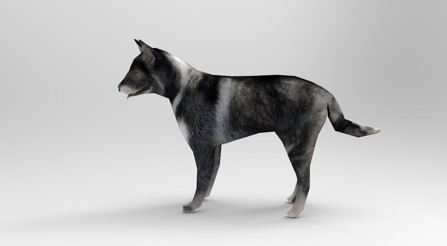 dog rigged royalty-free 3d model - Preview no. 2
