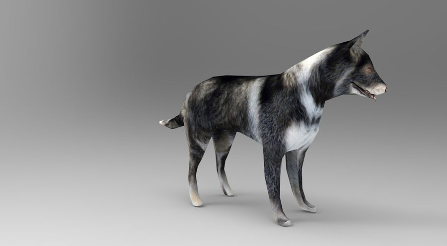 dog rigged royalty-free 3d model - Preview no. 6