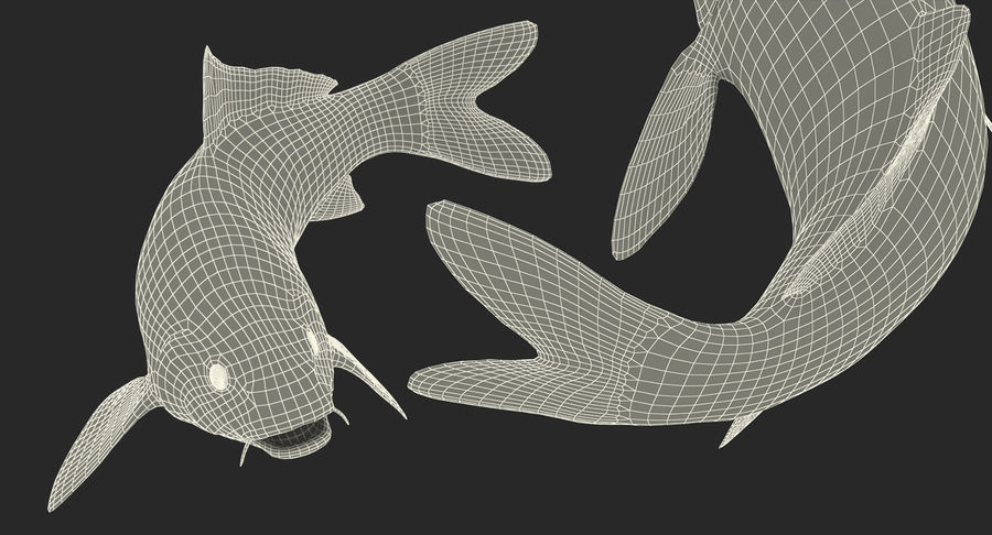 Harivake Koi Fish Swiming Pose royalty-free 3d model - Preview no. 29