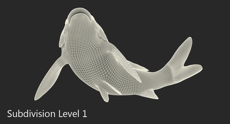 Harivake Koi Fish Swiming Pose royalty-free 3d model - Preview no. 16