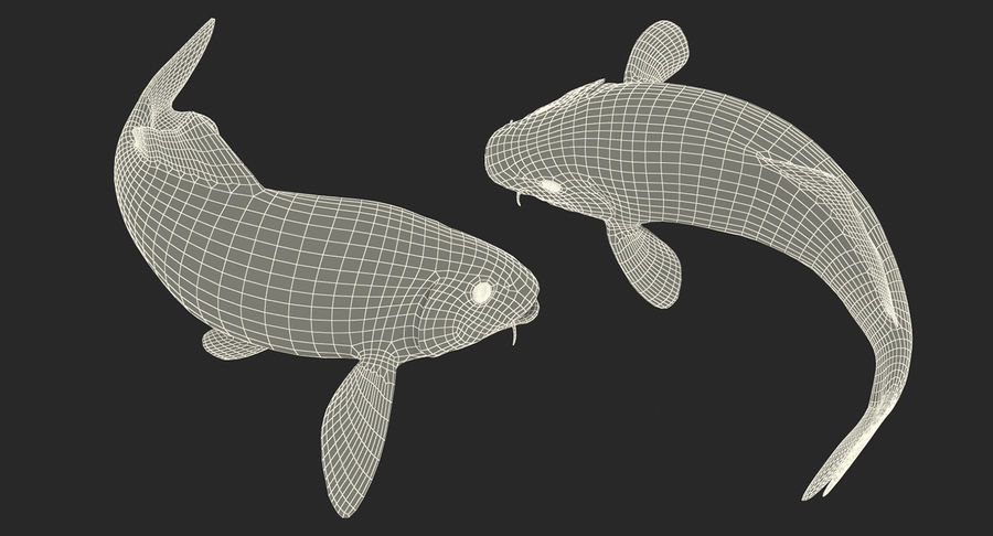 Harivake Koi Fish Swiming Pose royalty-free 3d model - Preview no. 22