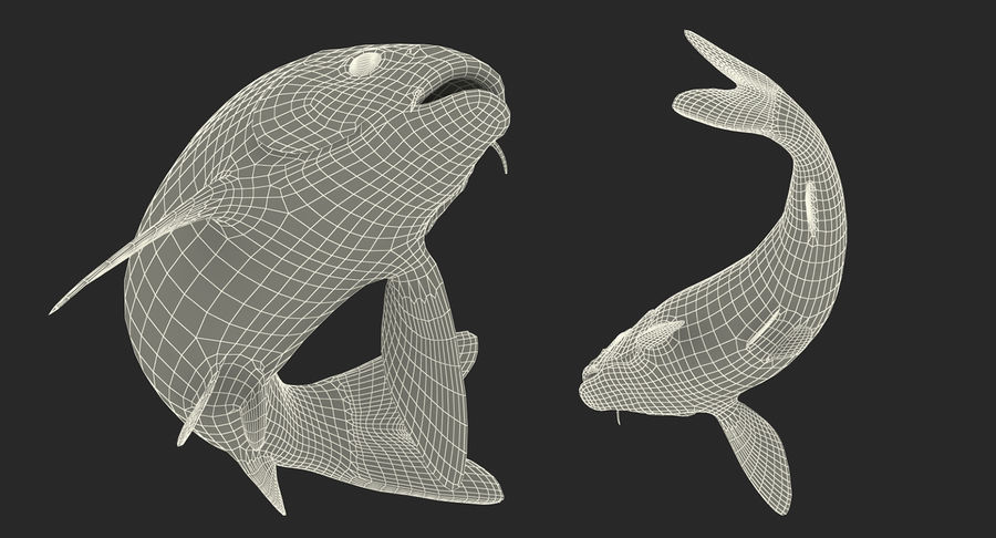 Harivake Koi Fish Swiming Pose royalty-free 3d model - Preview no. 23