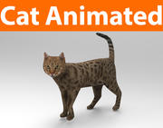 cat animated(1) 3d model