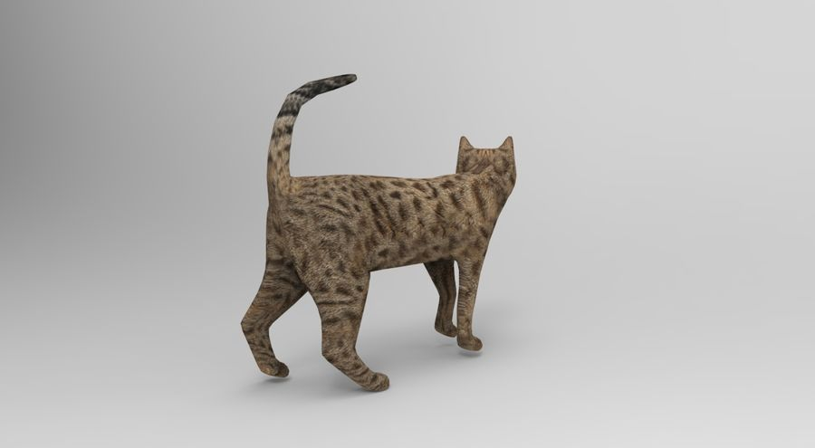 猫のアニメーション(1) royalty-free 3d model - Preview no. 5