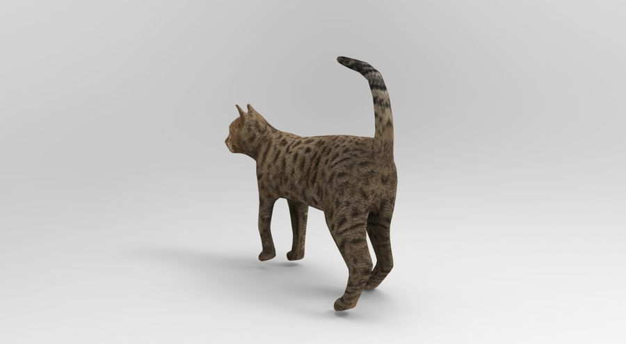 猫のアニメーション(1) royalty-free 3d model - Preview no. 3