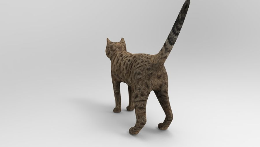 猫のアニメーション(1) royalty-free 3d model - Preview no. 11