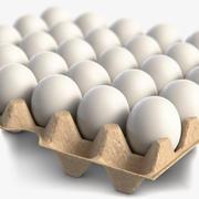 Eipakket met witte eieren 3d model