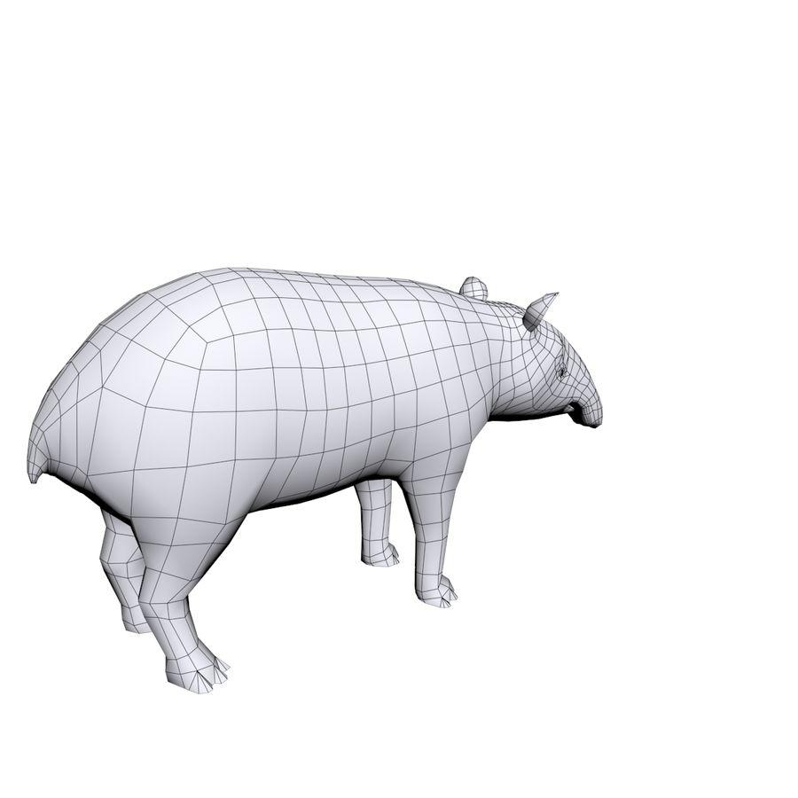 Tapir 3D Base mesh royalty-free 3d model - Preview no. 5