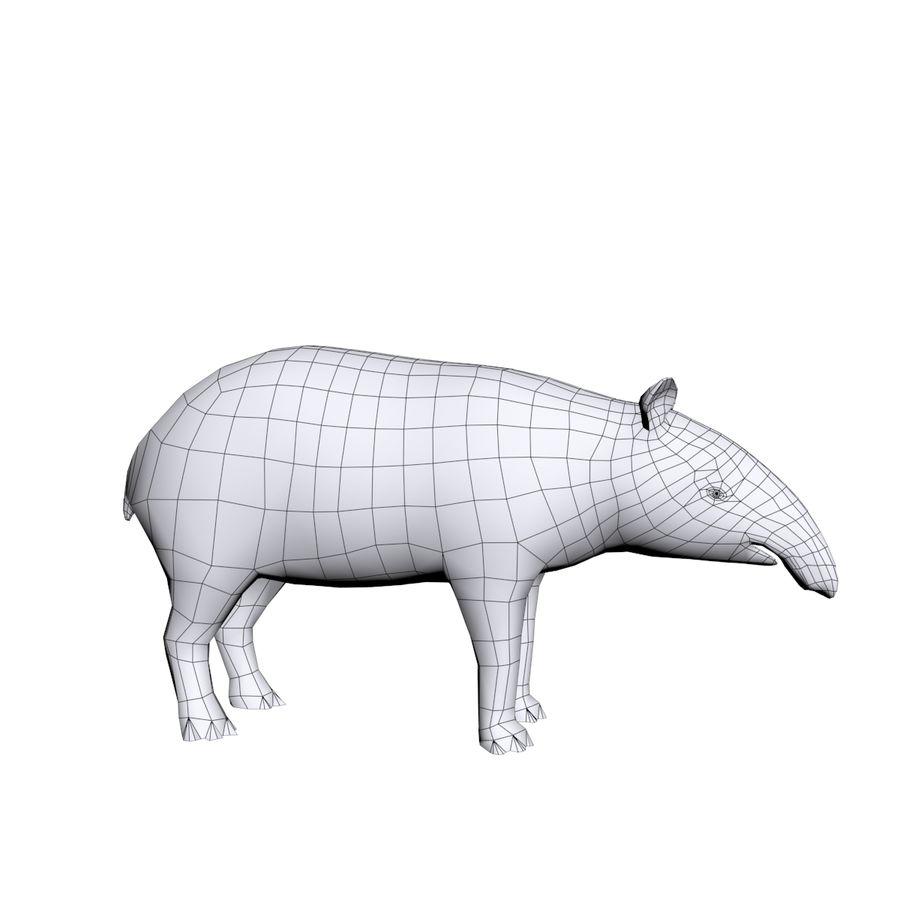 Tapir 3D Base mesh royalty-free 3d model - Preview no. 2
