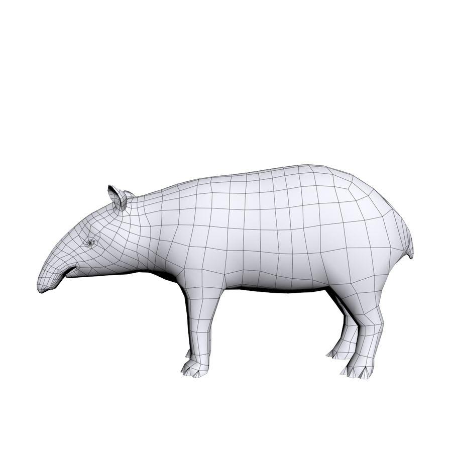 Tapir 3D Base mesh royalty-free 3d model - Preview no. 1