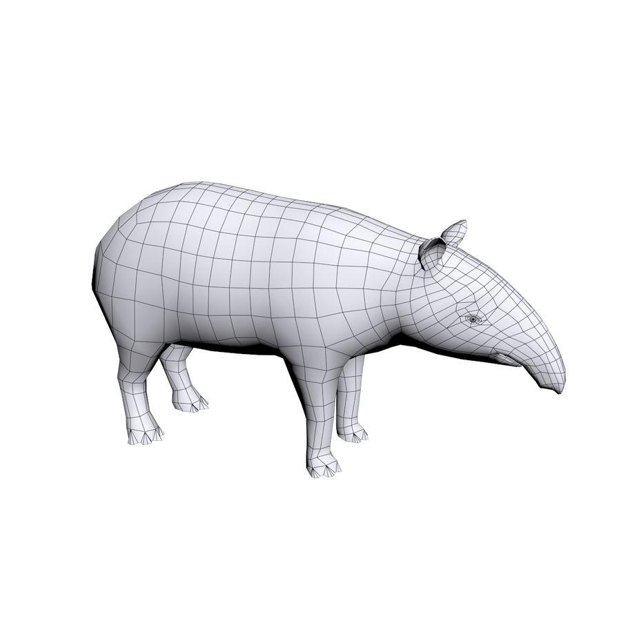 Tapir 3D Base mesh royalty-free 3d model - Preview no. 4
