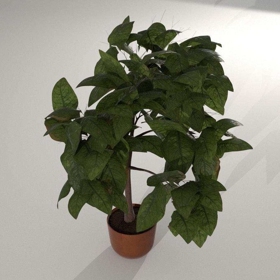 Planta da casa royalty-free 3d model - Preview no. 3