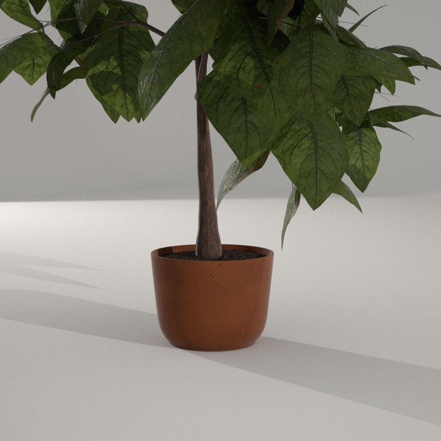 Planta da casa royalty-free 3d model - Preview no. 4