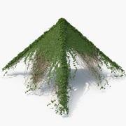 Пирамида плюща 3d model