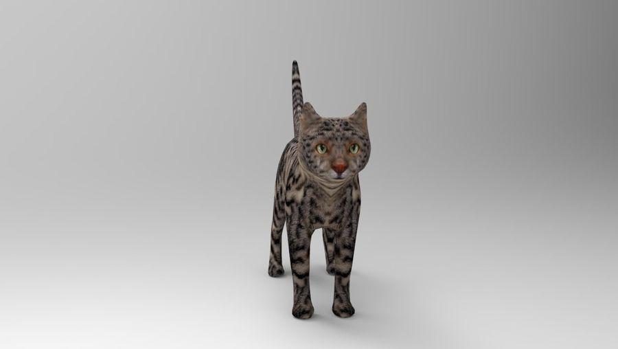 kot takielunek royalty-free 3d model - Preview no. 22