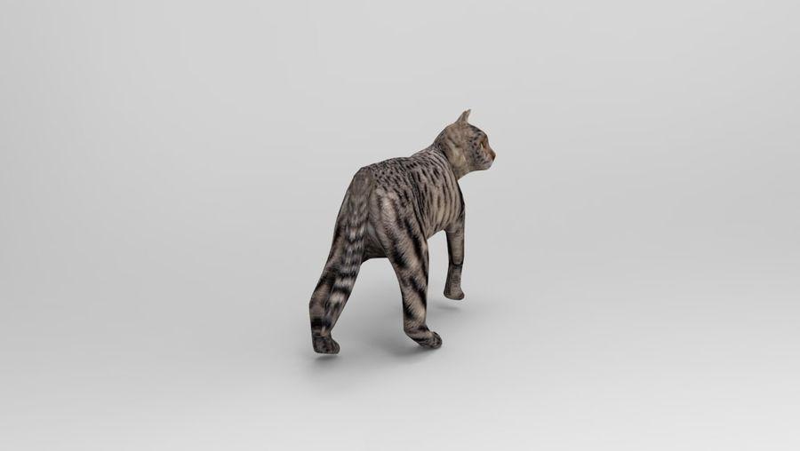 kot takielunek royalty-free 3d model - Preview no. 6