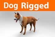 takielunek dla psów (2) 3d model