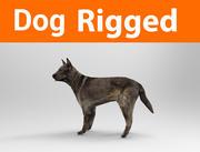 takielunek psa 3d model