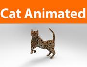 고양이 애니메이션 (1) 3d model