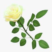 Rose 02 modelo 3d