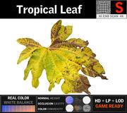 Tropisch blad (1) 3d model