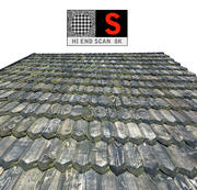 Varredura de telhado de madeira 3d model