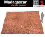 Madagaskar Dżungla 3d model