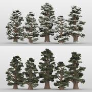 5 + 5 alberi di ginepro 3d model