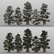 5+5 Juniper Trees 3d model