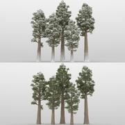 5 + 5 alberi di sequoia 3d model