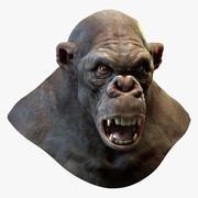 Cabeza de gorila (sin pelo) modelo 3d