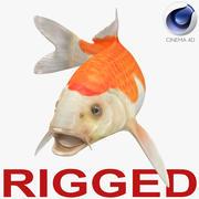 Harivake Koi Fish Rigged for Cinema 4D 3d model