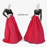 SHERRI HEUVEL 50357 3d model