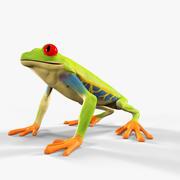 Żaba nadrzewna 3d model