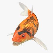 Koi Fish Rigged 3d model