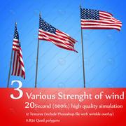 ФЛАГ анимированный 3 уровня силы ветра 3d model