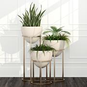 Rośliny pokojowe 14 3d model