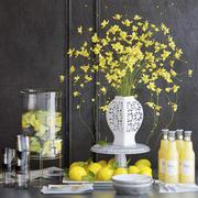 Żółte kwiaty i cytryny 3d model