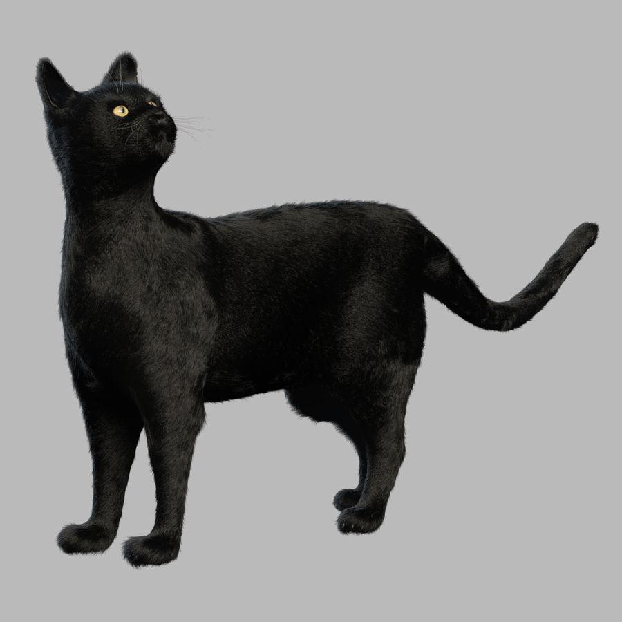 Gato preto royalty-free 3d model - Preview no. 1