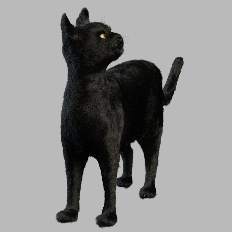 Gato preto royalty-free 3d model - Preview no. 8