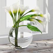 Calla lily 3d model