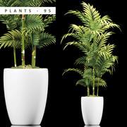 plants 95 3d model