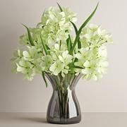 Geranium bouquet 3d model