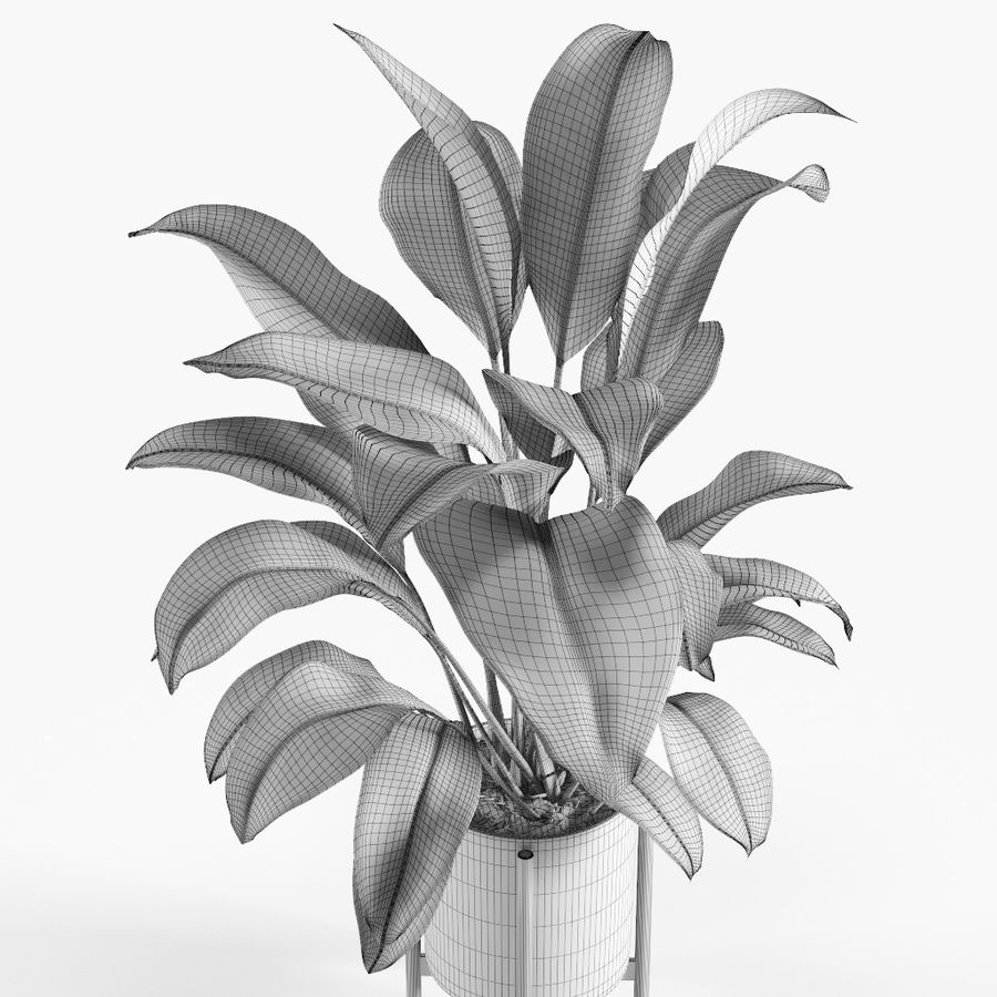 Plant royalty-free 3d model - Preview no. 7