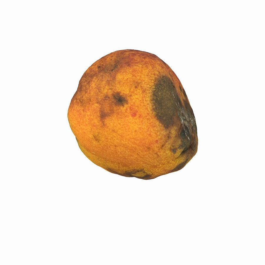 Rotten Rotte Apricot 03 royalty-free 3d model - Preview no. 20